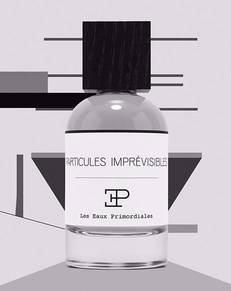 Picture of PARTICULES IMPREVISIBLES