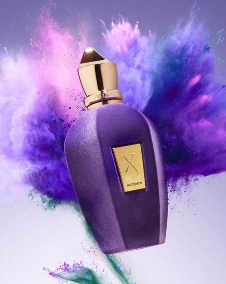 Picture of V COLLECTION ACCENTO 50ML