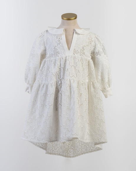 Picture of DELOYA DRESS