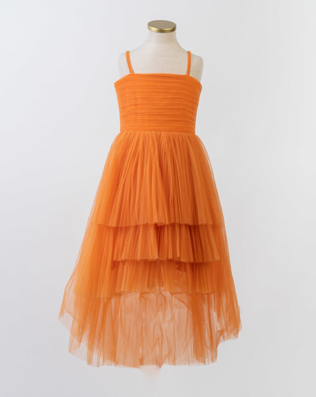 Picture of PERSIMMON GOWN
