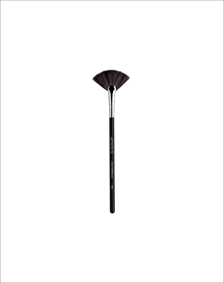Picture of F42 STROBING FAN BRUSH