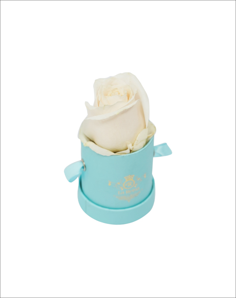 Picture of BLUE MINI BOX WITH ROSE