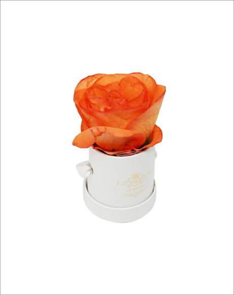 Picture of WHIITE MINI BOX WITH ROSE