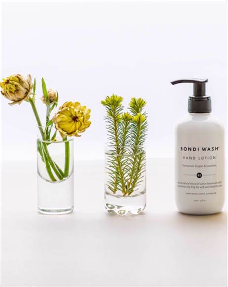 Picture of TASMANIAN PEPPER & LAVENDER - HAND LOTION 250ML